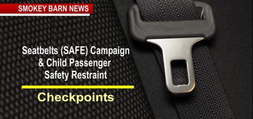 Seat Belt & Child Safety Seat Campaign Starts This Week (Buckle Up)