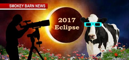Eclipse 2017: The Science, Best Local Events & More