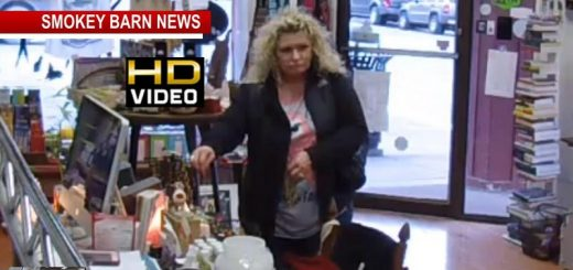 Suspect Sought In Springfield Store Thefts (VIDEO)