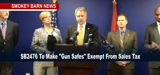 Kerry Roberts & Dems Move To Eliminate Gun-Safe Tax